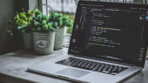 Diferencias entre diseño y desarrollo web